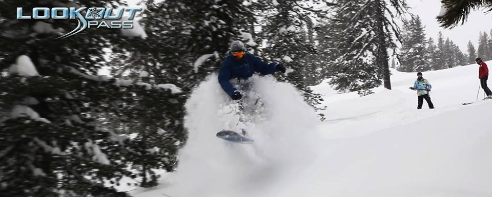 Snowboarder breaking through the powder in the forest